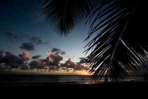 Little Cayman Vacations